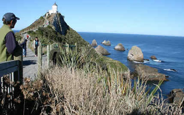 demoTop 10 things to do in The Catlins
